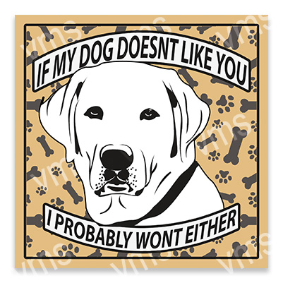 AN015 – Dog Doesn't Like you Labrador – 12×12