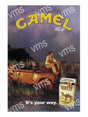 LR006 – Camel – 8″x12″
