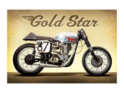 AMB005 – Gold Star – 18″x12″