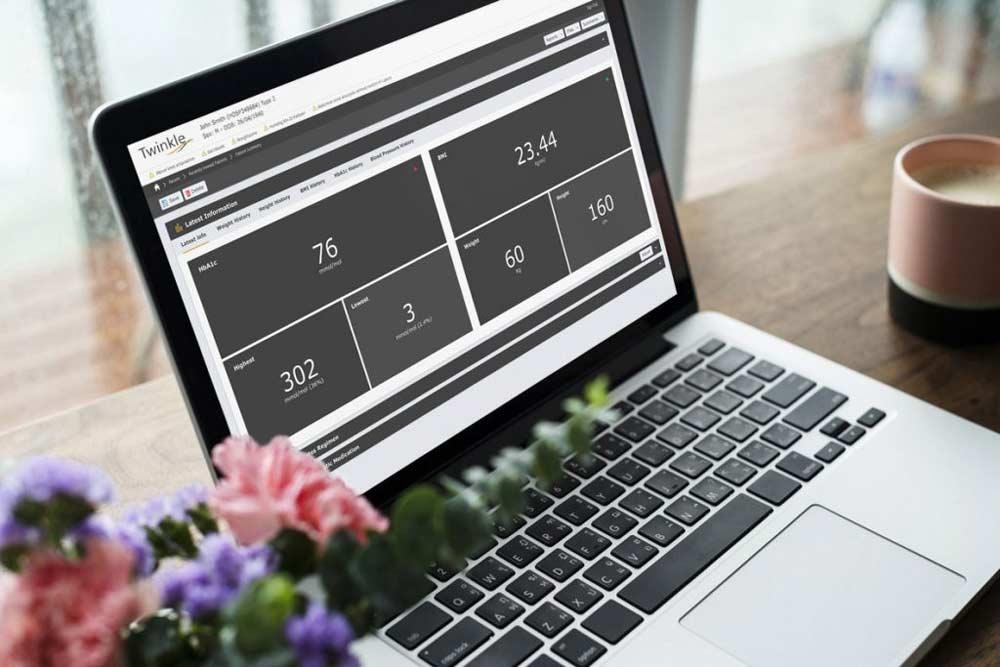 Laptop showing Twinkle