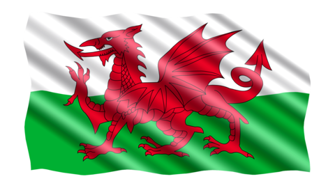 Welsh flag Covert Farm Camping Wales