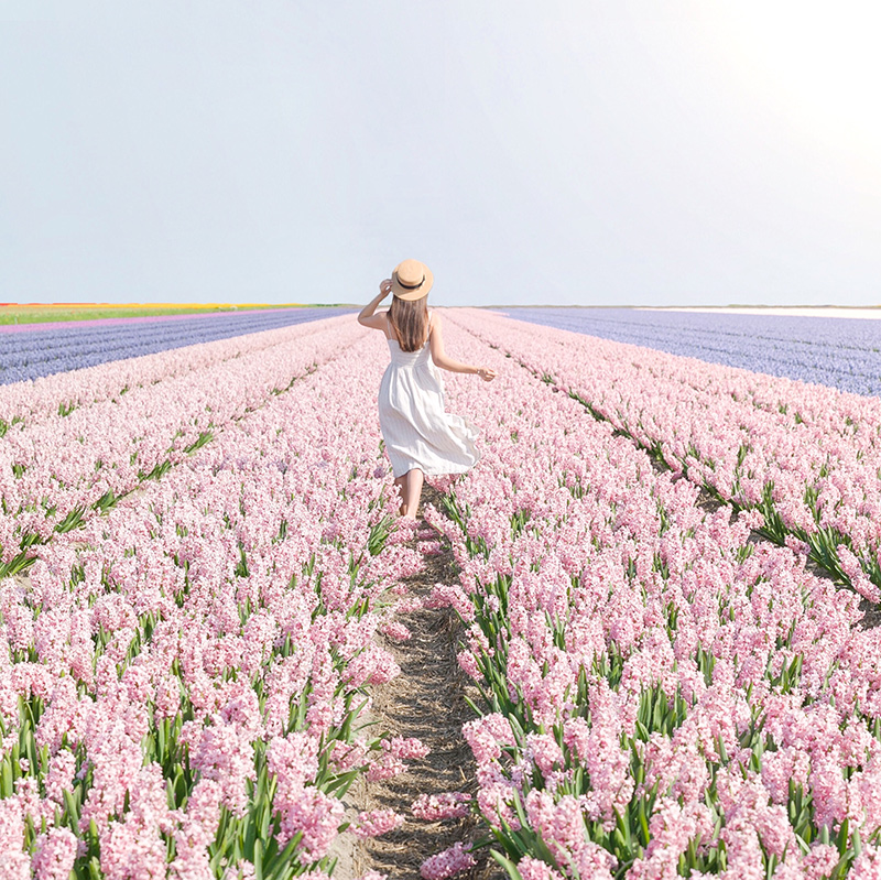 Marioly Vazquez in a flower field pastel photography