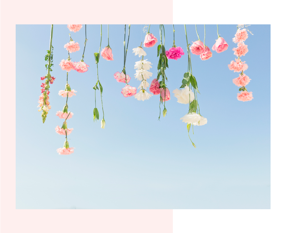 hanging pink flowers over a blue sky by mariamarie Marioly Vazquez