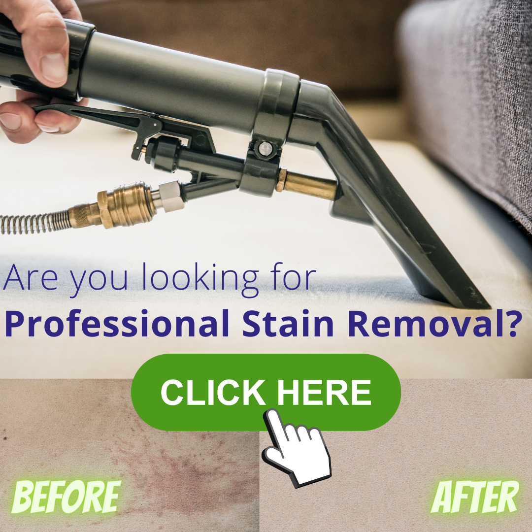 Hertford carpet spot and stain removal service