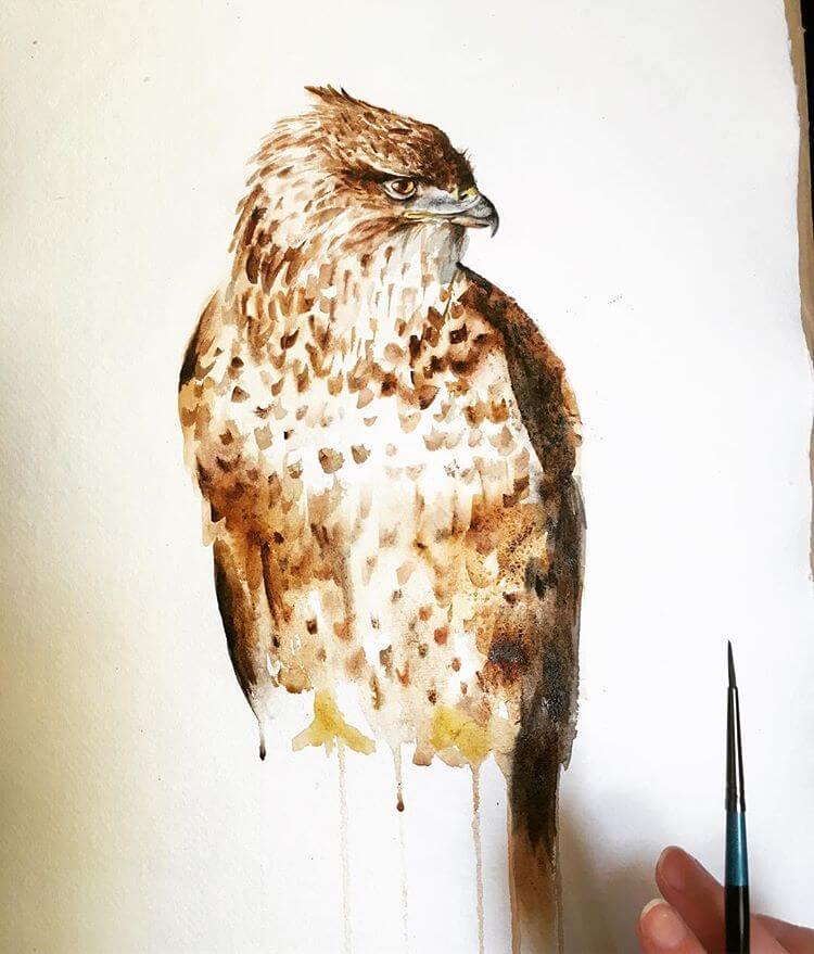 Buzzard Painting Watercolour