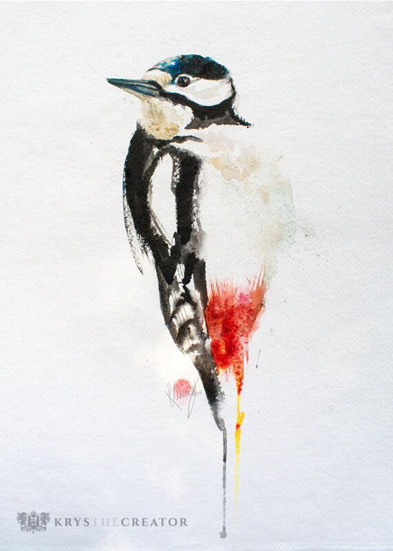 Great Spotted Woodpecker Watercolour Bird Art
