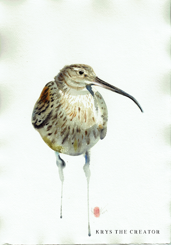 Original Curlew Wildlife Watercolour Painting For Sale