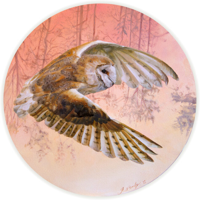Barn Owl Oil Painting
