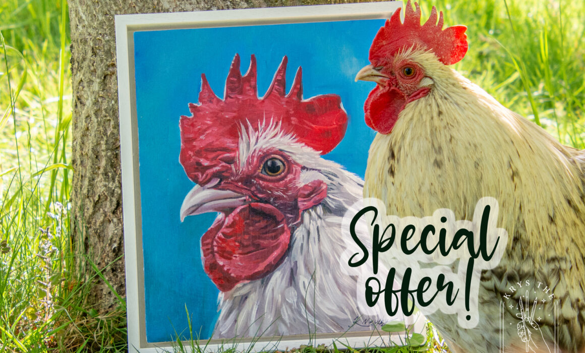 Pet Portrait Painting Special Offer