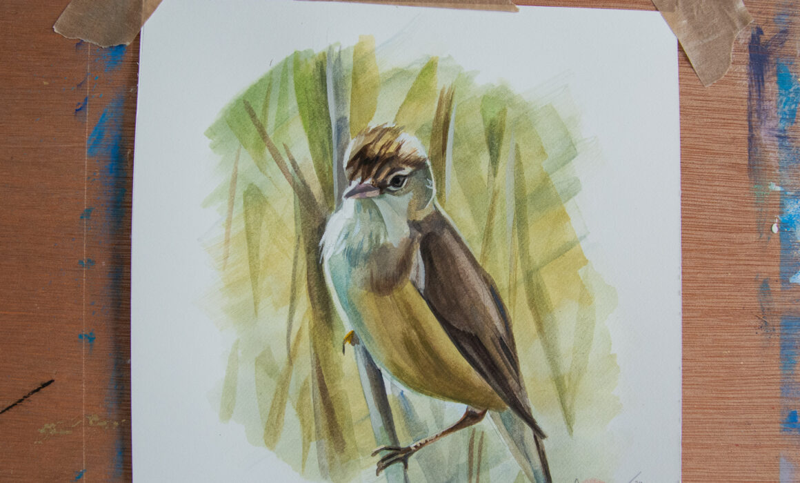 Reed Warbler Painting