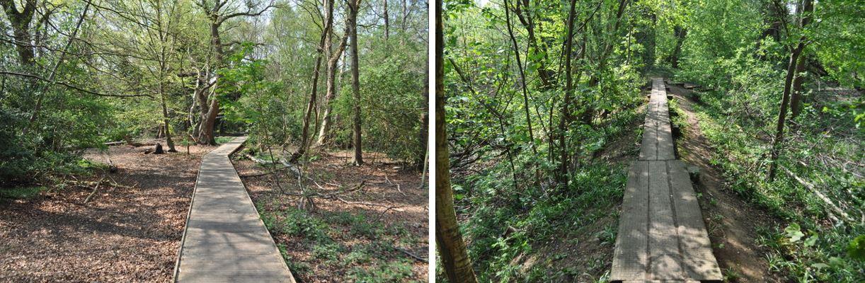 Tolkien trail Birmingham