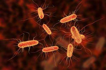 Roslin Technologies signs collaboration agreement to develop E. coli vaccine