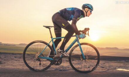TOP TEN BIKE BRANDS ON THE MARKET