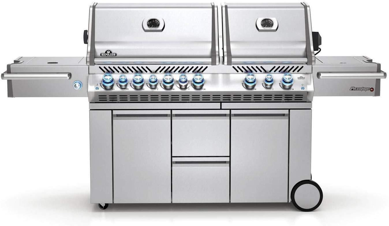 best napoleon natural gas grill