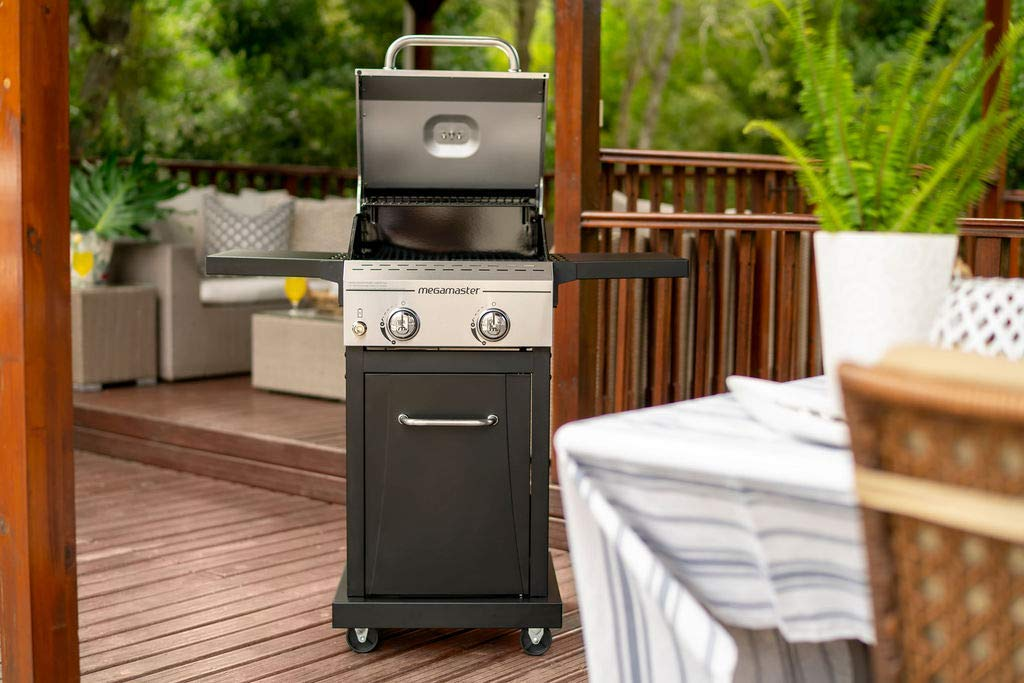 Best Small Propane Grills