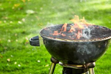 Is It Better to Grill with Charcoal or Wood?
