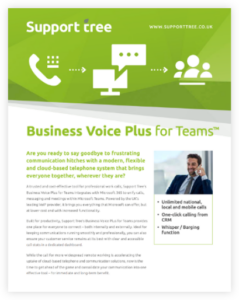 Business voice plus brochure