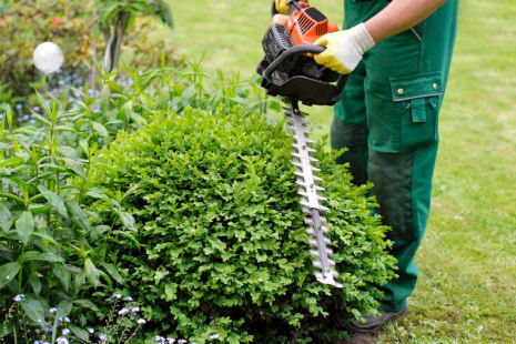 Leicester Gardening Services