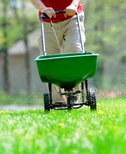 april 2017 gardening advice