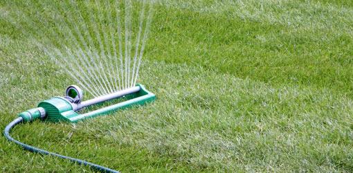 Irrigate Lawn