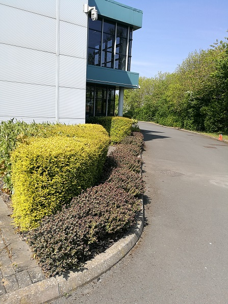 leicester office and industrial grounds maintenance