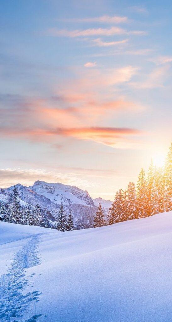 Blissful winter landscape