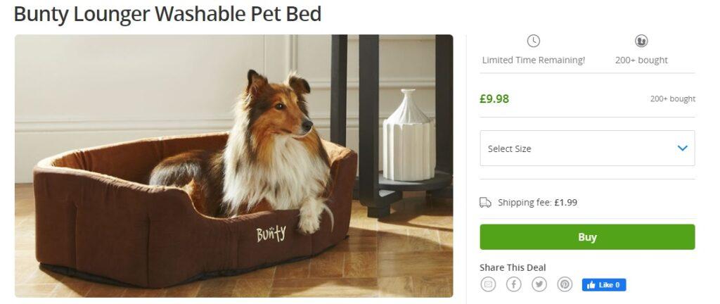 Pet Lounger