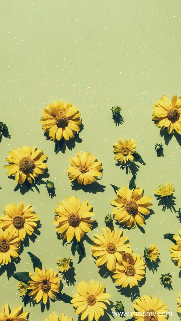 Flowers summer wallpaper background