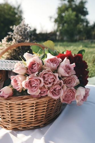 Pink roses in basket aesthetic background for iPhone