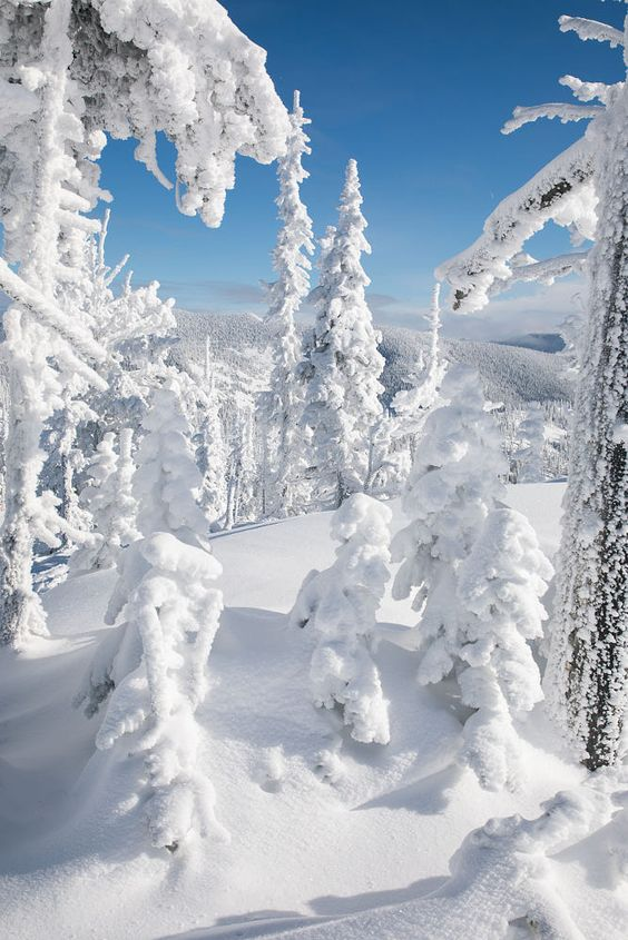 Snowy trees in mountains Christmas wallpaper for iPhone