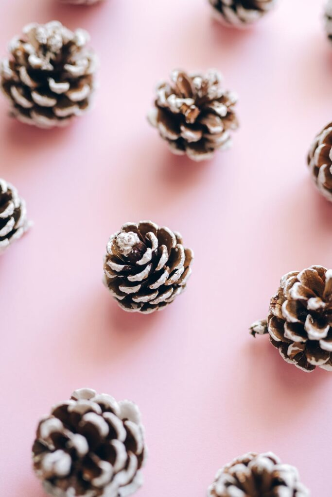 Sparkling pine cone aesthetic image