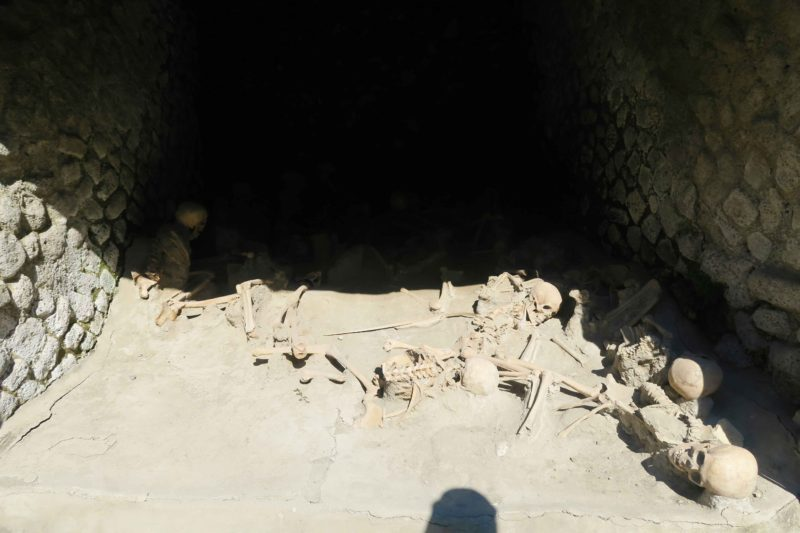 skeletons found at the archeological site of herculaneum in italy