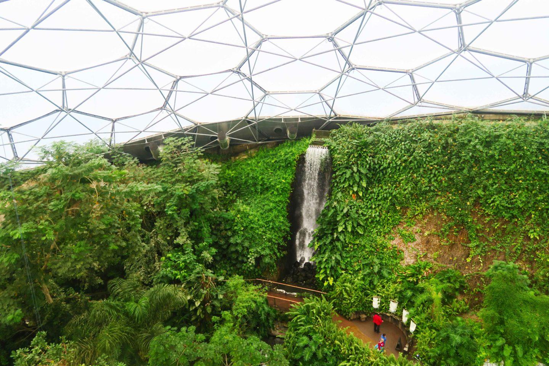 eden project rainforest waterfall