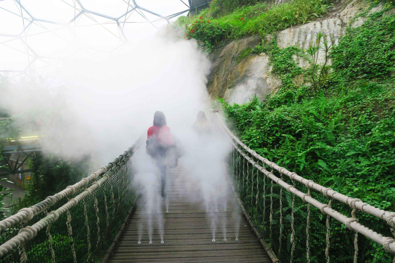 eden project steam bridge