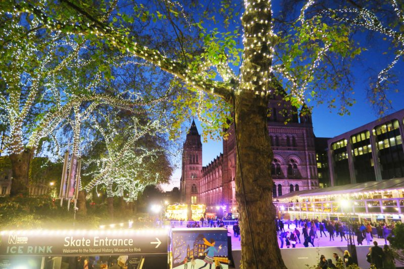 natural history museum in london at christmas lights