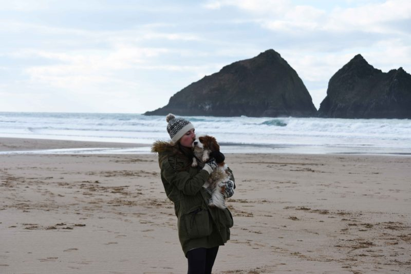 holywell bay cavalier king charles spaniel and owner