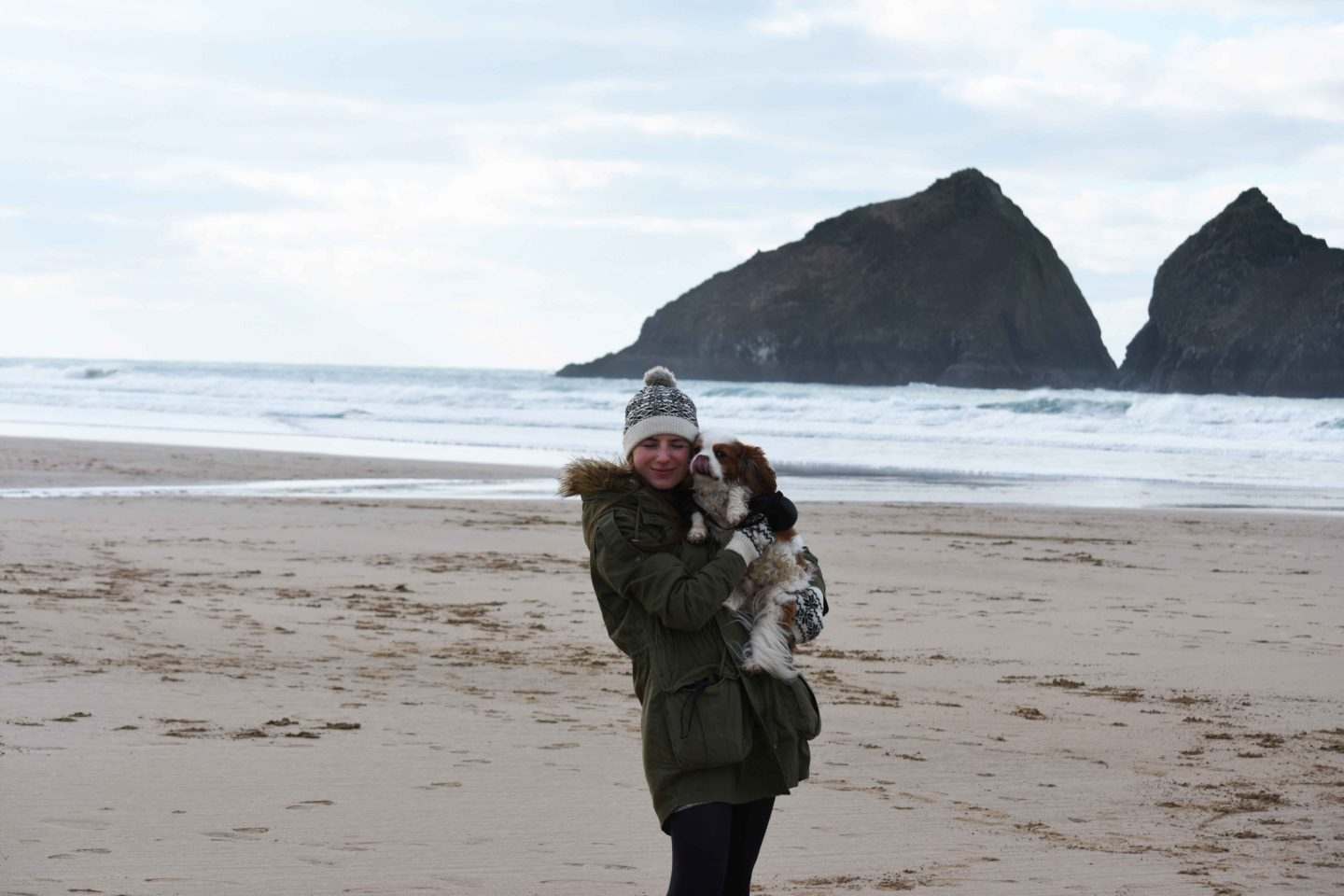 holywell bay cavalier king charles spaniel and owner licking nose