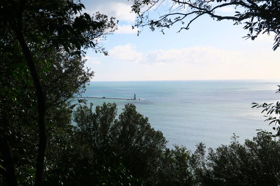 mount edgcumbe lighthouse