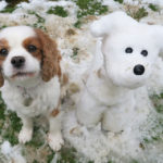 snow dog and real dog