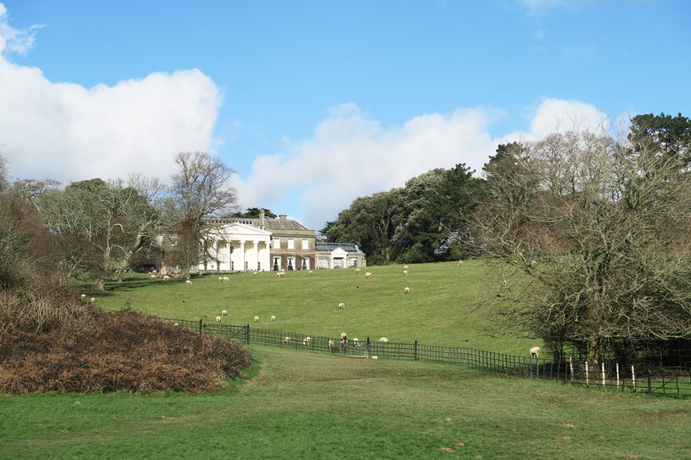 trelissick gardens grounds