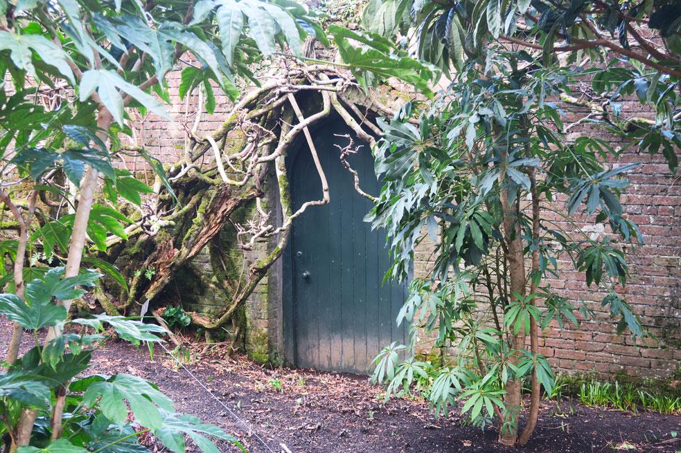 trelissick gardens national trust door