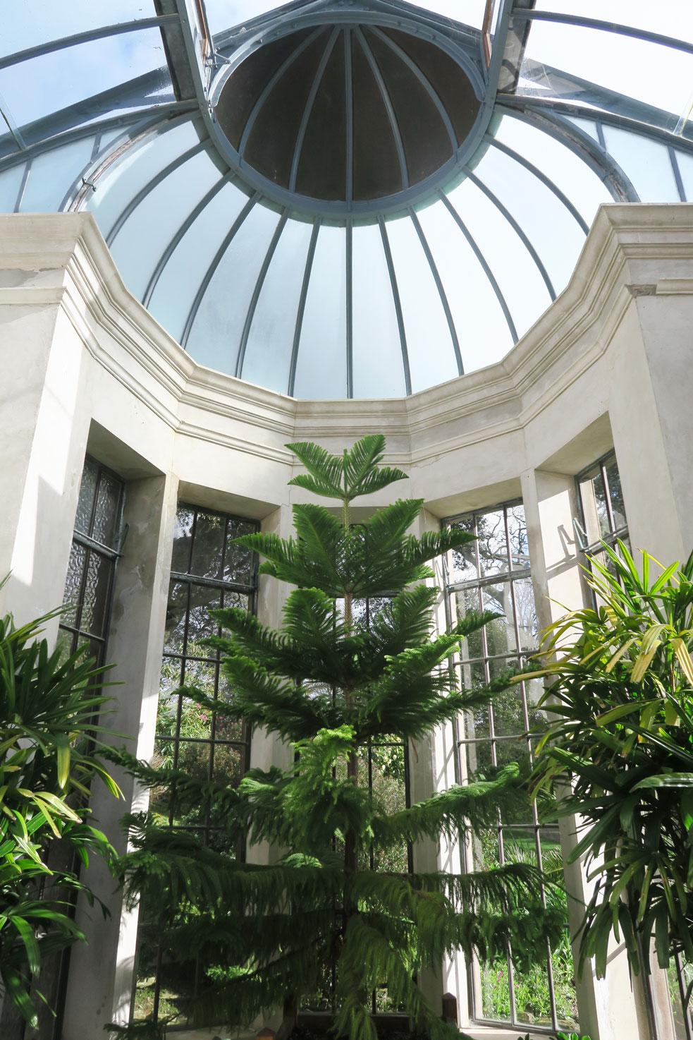 trelissick gardens sun room inside