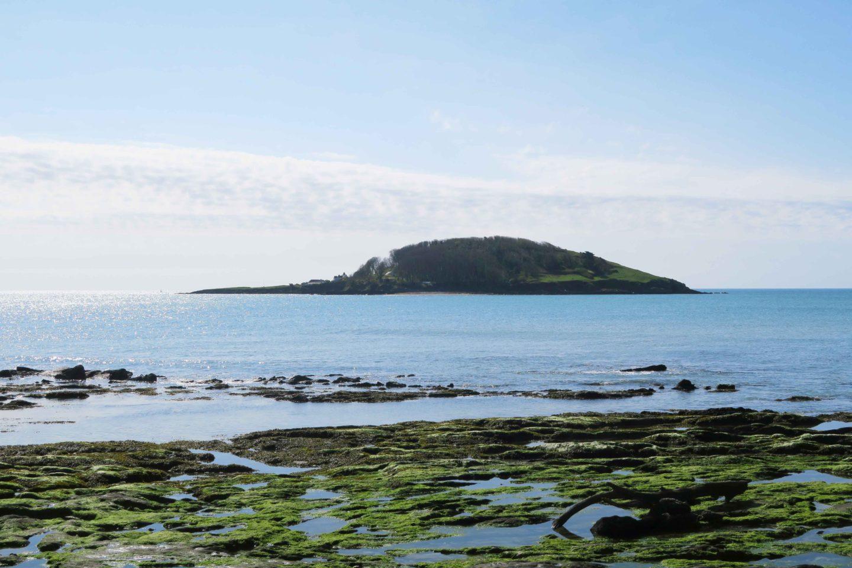 looe island in cornwall