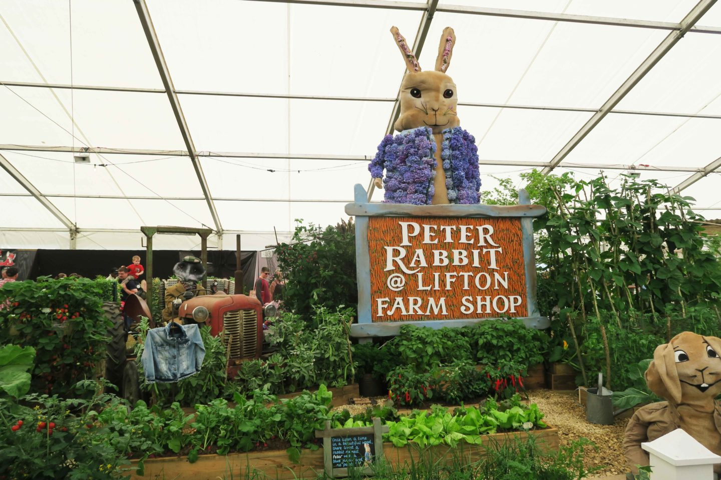 peter rabbit flower display at the royal cornwall show
