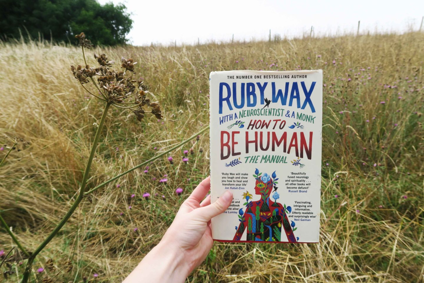 ruby wax how to be human top summer read
