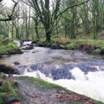 golitha falls river in cornwall