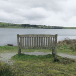 bench overlooking siblyback in cornwall