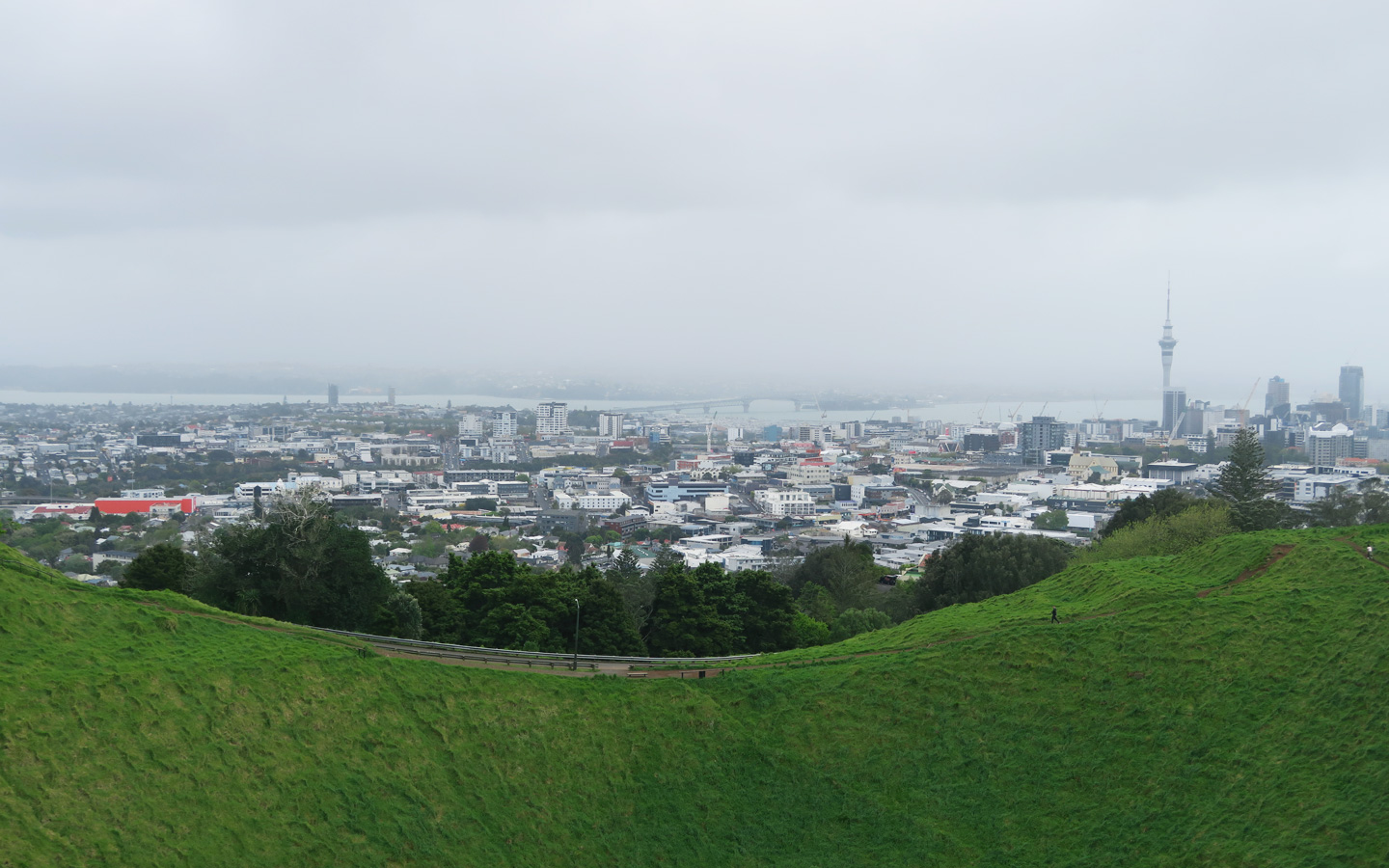 view of auckland city from mount eden in new zealand