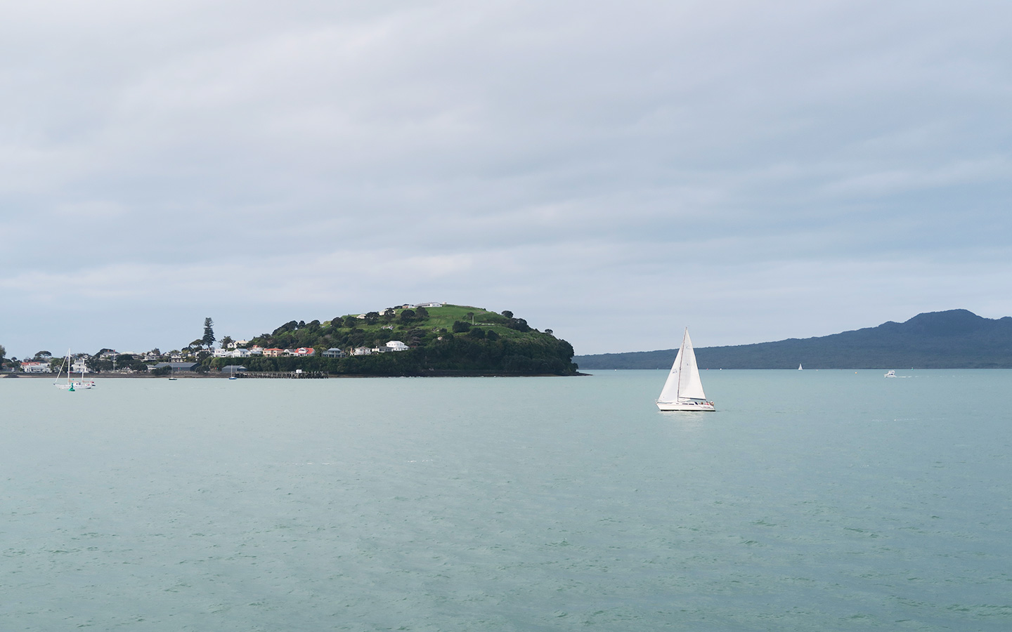sail boat near waiheke island in auckland in new zealand