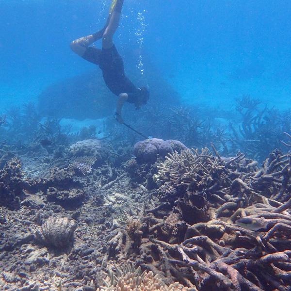 man taking film on gopro in the great barrier reef in australia